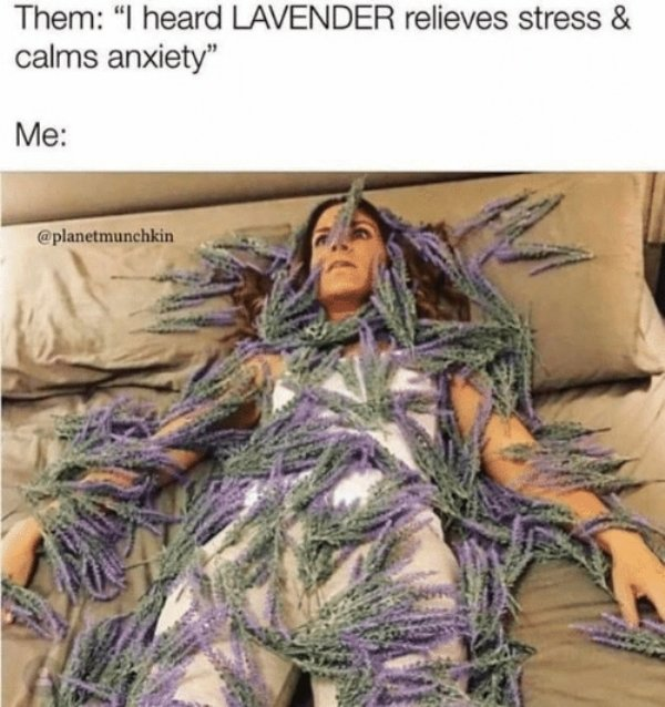 Memes About Anxiety (34 pics)
