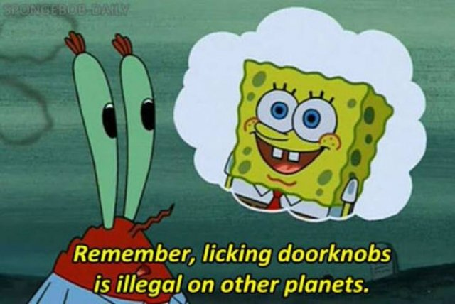 Funny Sponge Bob Moments (27 pics)