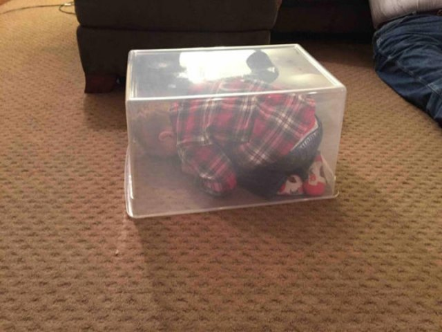 Kids Are Good At Hiding (22 pics)