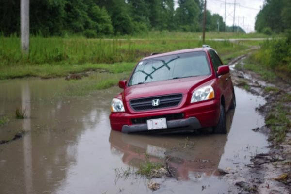 Weird Road Situations (25 pics)