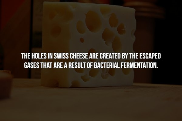 Food Facts (15 pics)