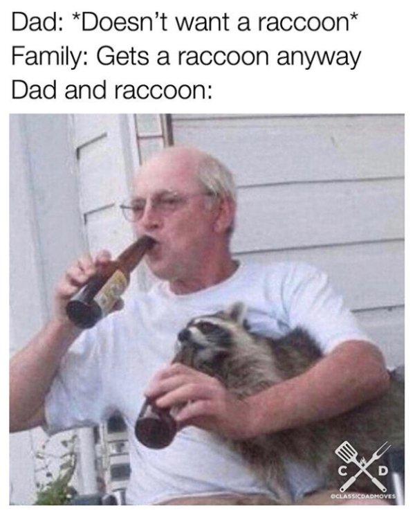 Dad Memes (36 pics)