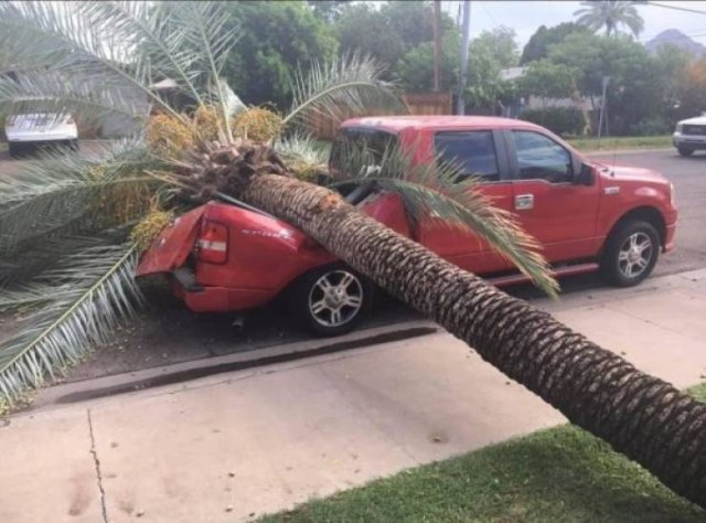 Cars Have Bad Days Too (42 pics)