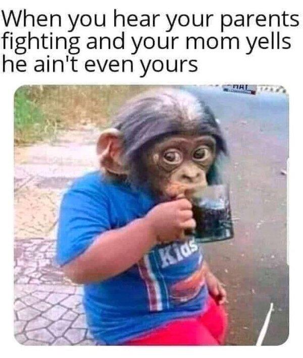 Adult Memes (39 pics)