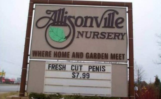 Awesome Signs (28 pics)