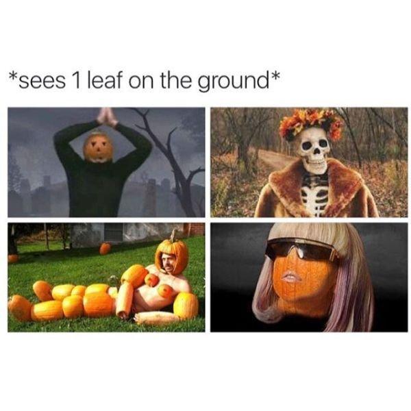 Fall Memes (23 pics)