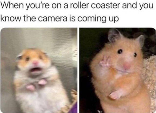 Random Funny Pictures (50 pics)