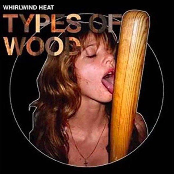 Funny WTF Album Covers (36 pics)