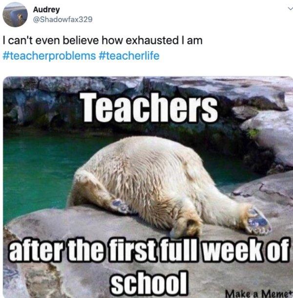 Teacher Memes About New School Year (25 pics)
