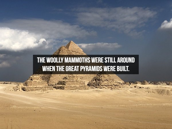 Interesting Historical Facts (17 pics)