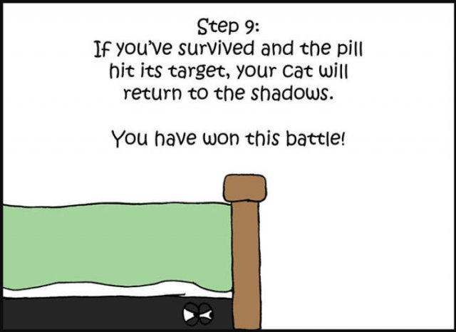 How To Give A Cat A Pill (10 pics)