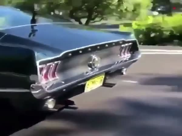 Lambo Showing Off Its Loud Engine Until This Mustang Shows Up In Traffic