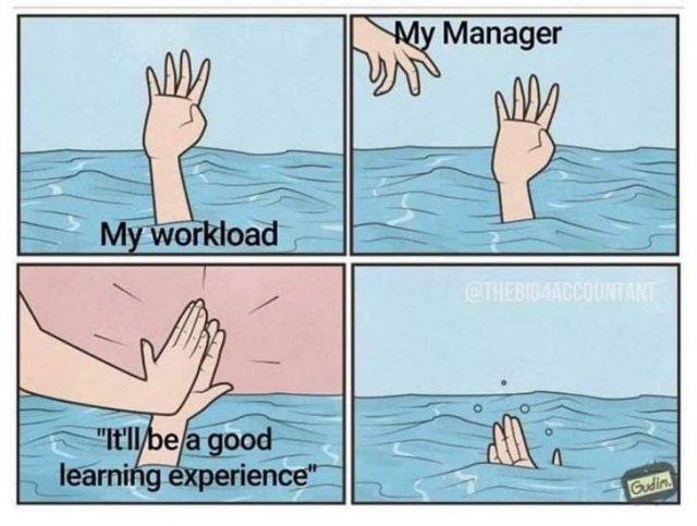 Corporate Memes (33 pics)