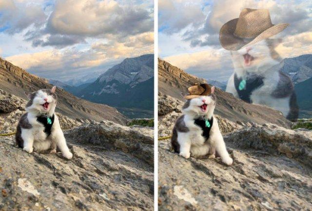 Fun With Photoshop (19 pics)