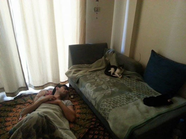 People Can Sleep Anywhere (45 pics)
