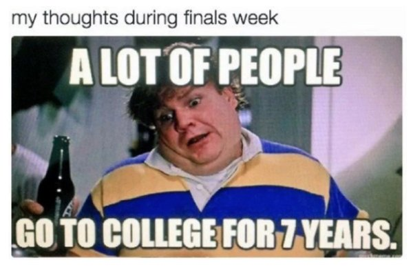 College Memes (30 pics)