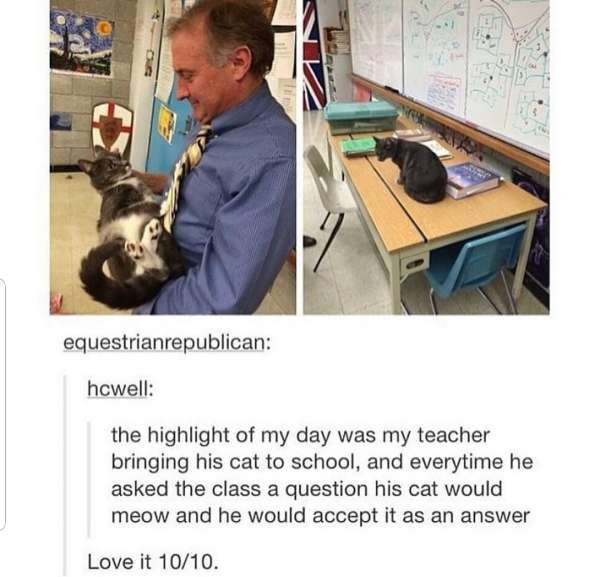 Those Are So Wholesome (26 pics)