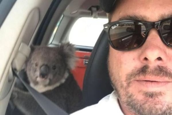Welcome To Australia (25 pics)