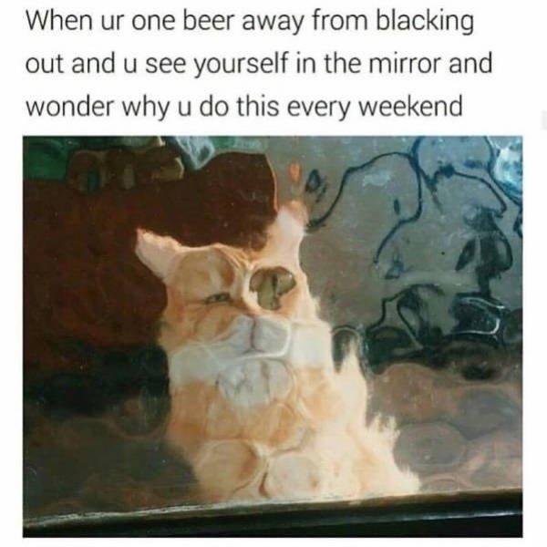 Alcohol Memes (51 pics)