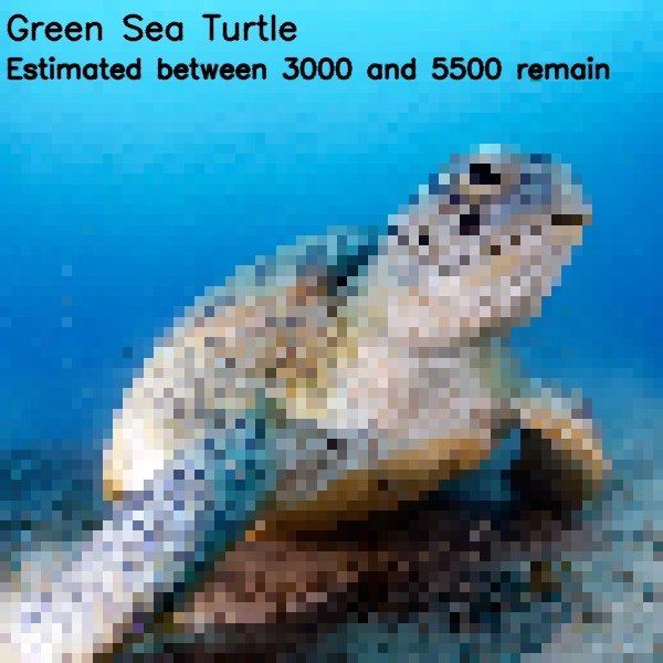 Endangered Animal Photos Composed Of As Many Pixels As Species Left (22 pics)