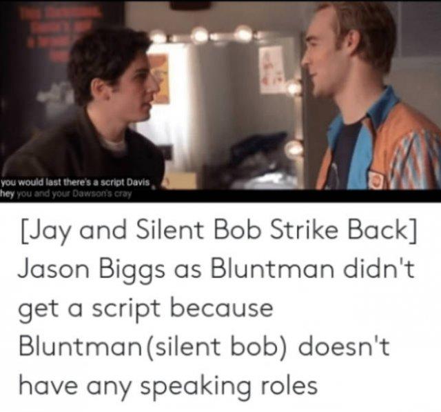 """""""Jay And Silent Bob"""" Memes (54 pics)"""