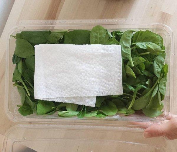 Instagram Food Facts (21 pics)