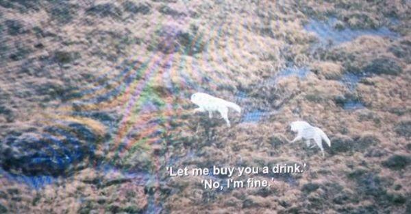 Funny Subtitles (24 pics)