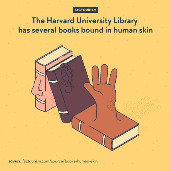 Illustrated Facts (52 pics)