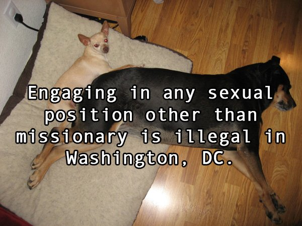 WTF Sex Laws In The United States (10 pics)
