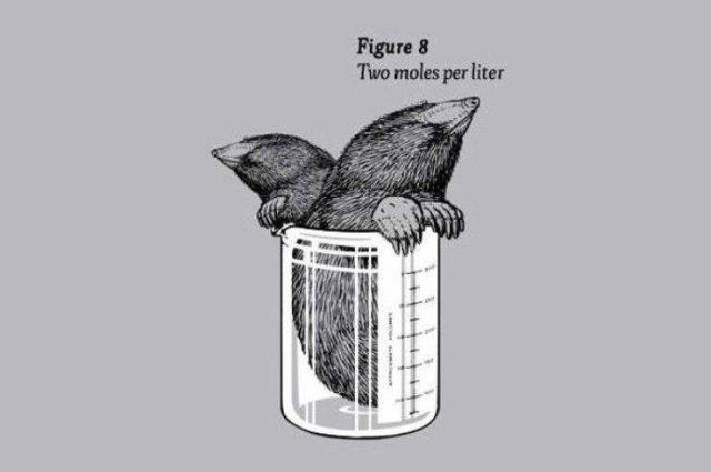 Clever Puns (25 pics)