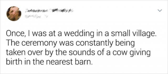 Wedding Oddities (22 pics)