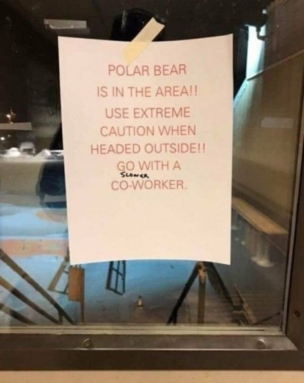 Meanwhile In Canada... (25 pics)