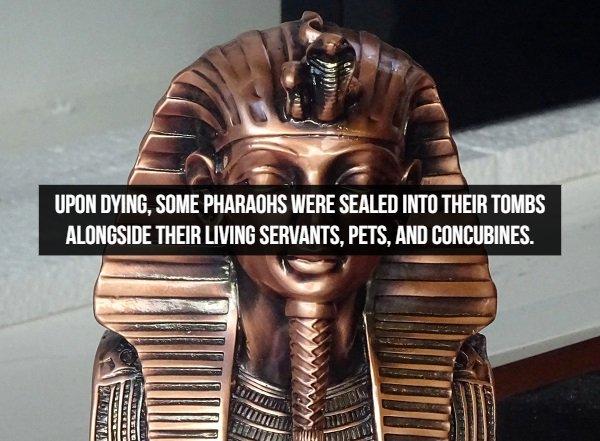Amazing Historical Facts (17 pics)