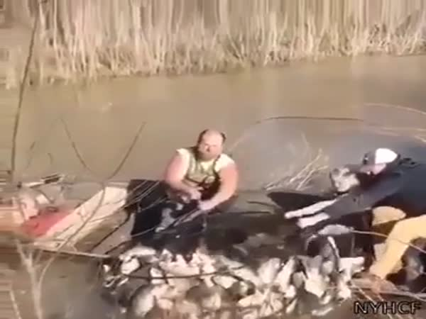 Fishing Gone Wrong
