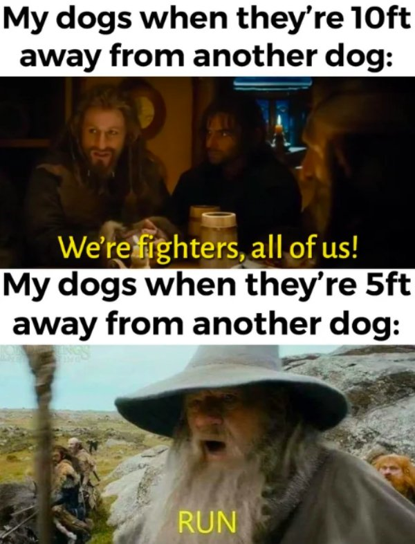 The Lord Of The Rings Memes (30 pics)