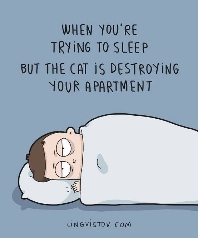 Comics About Cat And Its Owner (40 pics)