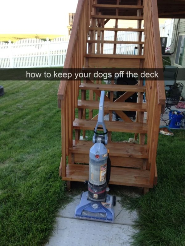 Clever Things (38 pics)