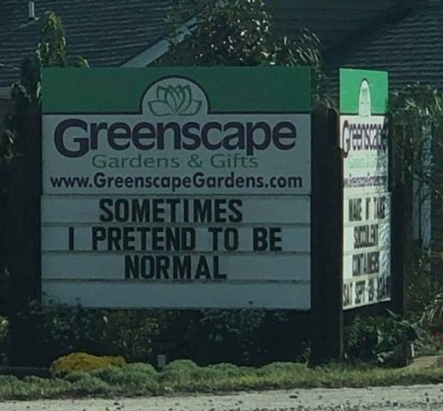 Right Signs (17 pics)