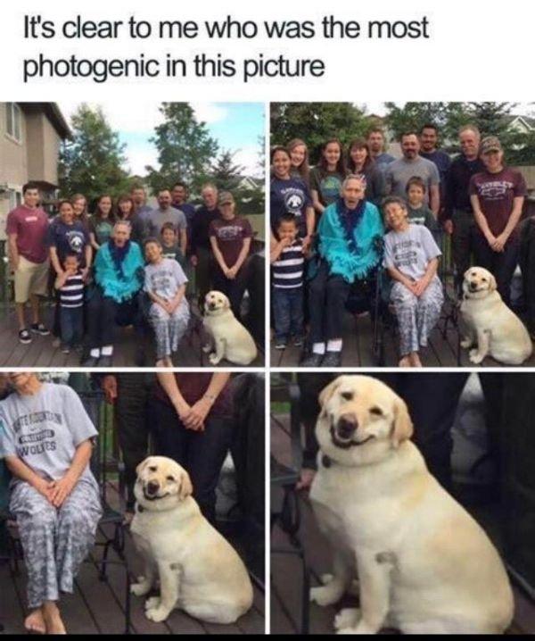 Happy Moments (23 pics)
