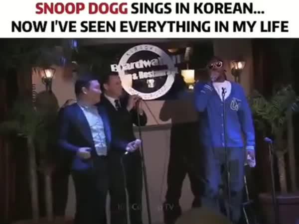 Snoop Dogg Sings In Korean