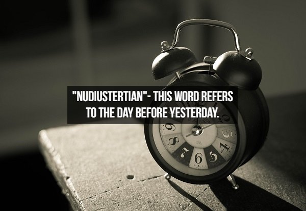 Amusing English Words (18 pics)