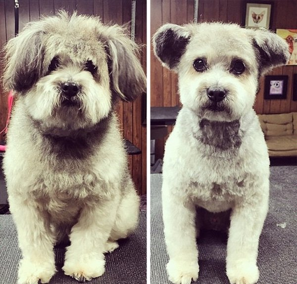 Before & After (27 pics)