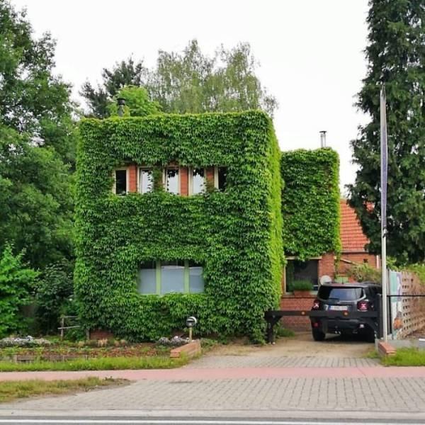 Strange Belgian Houses (45 pics)