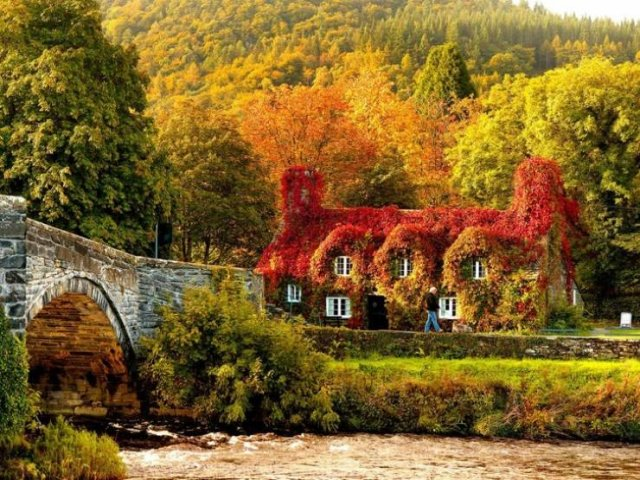 Beautiful Fall Across The World (22 pics)