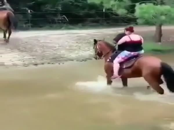 Horse Physics Is The Best Kind Of Physics