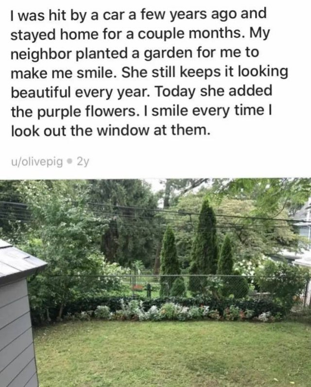 When You Have Good Neighbors (16 pics)