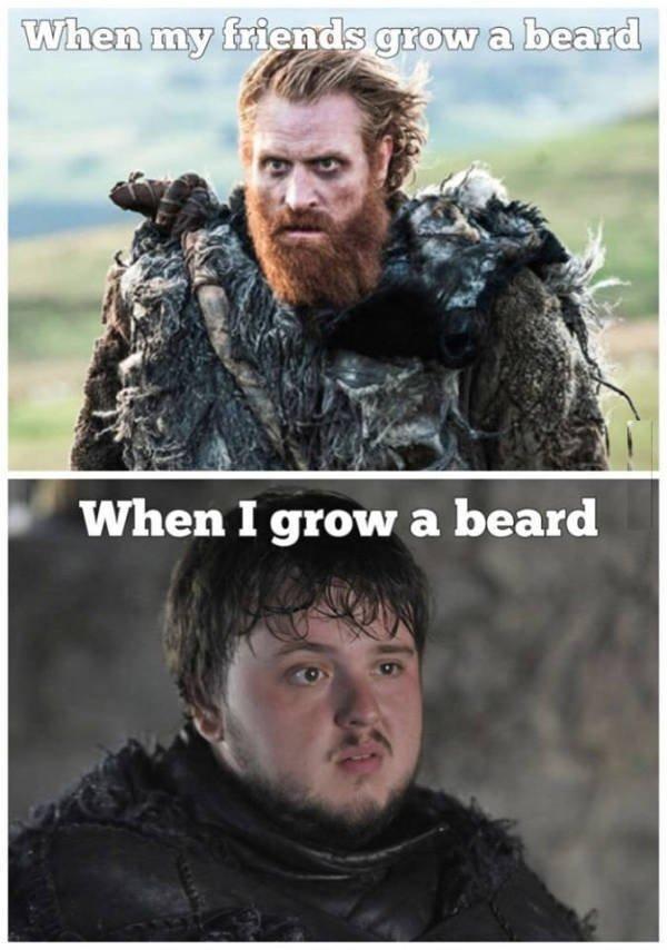 Beard Memes (44 pics)