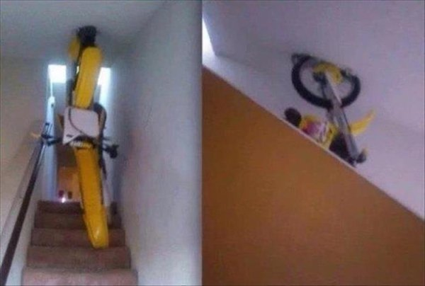 WTF Pictures (44 pics)