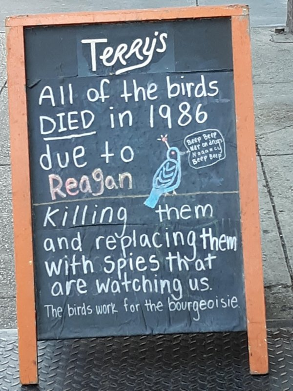 The Truth Behind Birds (31 pics)