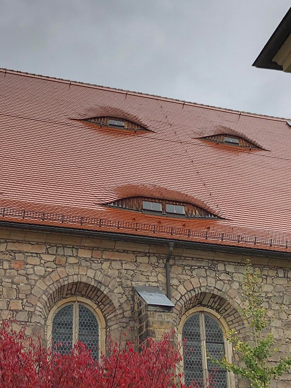 Do You See These? (27 pics)